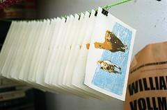 Prints Drying (jjldickinson) Tags: ocean wood dog beach water ink print cherry jamie sophie carving longbeach card foam printmaking wrigley olympusom1 woodblock palosverdes palosverdespeninsula danielsmith ranchopalosverdes yellowochre burntsienna fujicolorpro400 mokuhanga laserengraving pthaloblue watersolublereliefink transparentmedium promastermcautozoommacro2870mmf2842 promasterspectrum772mmuv card2013 roll457o2