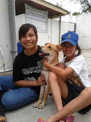 """Celine Soo<br /><span style=""""font-size:0.8em;"""">Celine with Sumo and a vet student</span> • <a style=""""font-size:0.8em;"""" href=""""http://www.flickr.com/photos/60200904@N02/11902934483/"""" target=""""_blank"""">View on Flickr</a>"""