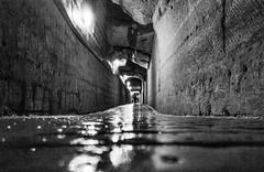 Catacombs - Paris