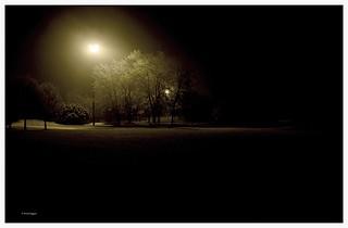 Soft light © Nicola Roggero