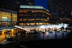 DSC02553.jpg (ntstnori) Tags: sony illumination  yokohama kanagawa minatomirai f28 carlzeiss   2470mm variosonnar  queenssquareyokohama  variosonnart2470mmf28zassm nishikuyokohama 99 slta99v