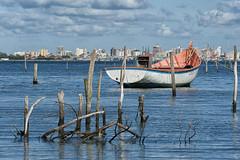 "DSC8783 (Tomas Brugger) Tags: city cidade brazil colors beautiful brasil wow boats boat photo flickr barco foto barcos image action tomas beleza fotografia riograndedosul canoa cidades espm brugger flickraward nikond700 nikonflickraward flickrunitedaward ""flickraward5"" ""flickrawardgallery"""