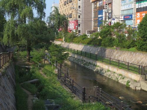 寝屋川の流れ