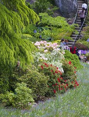 Where's Waldo, the gardener? (Getting Better Shots) Tags: flowers plants nature fauna flora bc britishcolumbia victoria buchartgardens artisticgardening