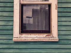 Weathered (larryvanhowe) Tags: worn architecture wooden places northamerica canada newfoundland stjohns subject windows