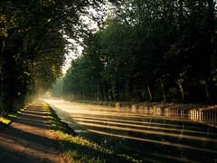 Lever du jour sur le canal (@phr_photo) Tags: canal garonne matin lumière light reflection sunrise aube morning nature paysage landscape sudouest france harmonie harmony
