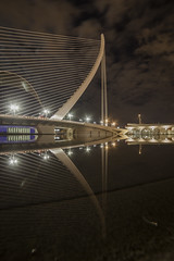 The harp [Explored] (Adrianosan Photo) Tags: valencia calatrava reflex night sky art achitecture light canon 14mm adrianosanphoto adrianoficarelli 2016 clouds water