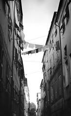 Ligurian days (pasta_pesto) Tags: italy genova liguria clothes hanging dry black white ropes windows narrow vicoli vintage houses