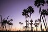 Venice, Kalifornien, USA (christianschwab1908) Tags: tag3 usa leica roadtrip kalifornien urlaub m262 westküste 2016 losangeles venicebeach sonnenuntergang westkã¼ste summaritm35mmf24asph