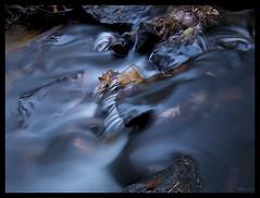 Pickle Creek - No. 8 (Nikon66) Tags: picklecreek hawnstatepark shutin stream ozarks stegenevievecounty missouri nikon d800 1424mmnikkor 10stopneutraldensity platinumheartaward