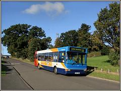 34641, Daneholme Avenue (Jason 87030) Tags: daneholmeavenue daventry northants northamptonshire longbuckby 11 dart dennis stagecoach morning sunny autumn town october 2016 34641 gx54dwm trees road