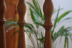 Depth of focus (WilliamWWD) Tags: bannister stairs areca plant focus depth