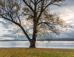 Morning on the Hudson river (Alberto Vanoli) Tags: map autumn color season nature creekriver sunsetsunrise plantstrees photo skyclouds hudsonvalley