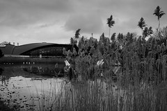 Hunker (John fae Fife) Tags: fujifilmx noiretblanc xe2 luxembourg monochrome bw nb rushes urban blackandwhite water urbanlandscape coque