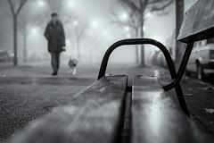 Niebla (Sergio Nevado) Tags: niebla fog vitoria gasteiz alava araba pais vasco euskadi banco callejera urbana blanco negro black white 50mm