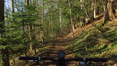 um/auf den Gaisberg (twinni) Tags: mw1504 08122016 bike biketour winter salzburg austria österreich gaisberg flachgau winterradl winterbike 20 hardtail bergziege garmin gps 700 oregon