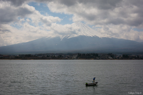 Aokigahara-1