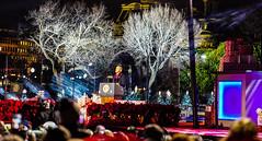 2016.12.01 Christmas Tree Lighting Ceremony, White House, Washington, DC USA 09322-2