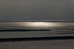 Hell und dunkel. Bright and dark. 1C4A0354 (manfredkrber) Tags: reflektionen reflections sea low tide see ebbe