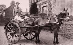 Ynysgau Dairy (CardCollector & HobbyPhotographer) Tags: postcard vintagephoto coach 1909 wales