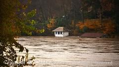 Torino (22) (cattazen.com) Tags: alluvione torino po esondazione parcodelvalentino murazzi pienadelpo cittditorino turin piemonte