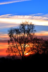 Bickerton hills, Cheshire, England. (lwts2000) Tags: sunset lwts2000 cheshire clouds sky nikon 5200 bickerton