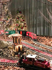 HTS-40 (Peter Parides) Tags: unitedstates newyork christmas trains newyorkbotanicalgardens new york city