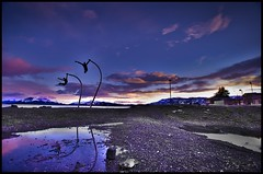 Pto. Natales shore
