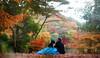 Autumn Wedding (Ilko Allexandroff / イルコ・光の魔術師) Tags: autumn wedding portrait panorama japanese engagement stitch bokeh 日本 setup 関西 ポートレート brenizer strobist イルコ