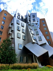 The Ray and Maria Stata Center (elalex2009) Tags: cambridge building architecture massachusetts newengland frankgehry statacenter modernarchitecture cambridgema deconstructivism therayandmariastatacenter