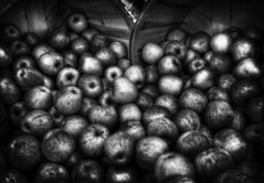 Apples (arbyreed) Tags: blackandwhite bw stilllife fruit apples arbyreed bushelsofapples