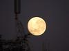 Lua e Torre do Villar Hotel (Mauricio Portelinha) Tags: moon antena globo rpc redeglobo tvglobo repetidora ivaiporã antenadaglobo retransmissora repetidoradaglobo rpcparana rpcmaringa mmp1172