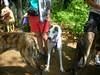 LakeWaban6-17-2012006