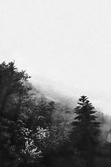 ...lightning #2... (UBU ♛) Tags: water blackwhite noiretblanc blues lightning biancoenero fulmini blunotte bluacqua ©ubu blutristezza unamusicaintesta landscapeinblues bluubu luciombreepiccolicristalli nottedei2000fulmini