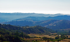 Open Space (Schelvism) Tags: ocean california blue trees cloud brown mist mountains green fog skyline view space horizon hills cover openspace distance bushes