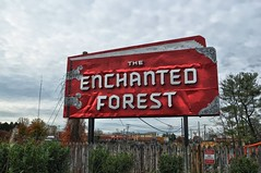 Enchanted Forest 11--11-13 (Forsaken Fotos) Tags: enchantedforest ellicottcity