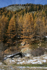 un petit pont de bois (luka116) Tags: nature berg montagne automne schweiz switzerland novembre suisse swiss pont svizzera paysage moutain wallis valais montagnes ltschental