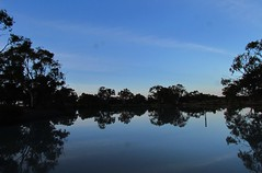 Blue (florahaggis) Tags: sunset sky clouds sunrise reflections colours australia victoria waterhole storms horsham pc3400 policepaddocks