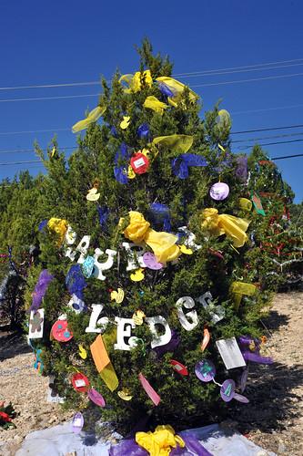 Trees_of_Loop_360_2013_160