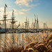 Tall Ships in Chestertown, Md.
