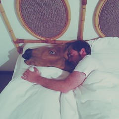 Ot and Horse (mallix) Tags: africa morning friends summer horse holiday sunshine southafrica hotel holding funny wake mask sleep lol spoon capetown cuddle anton hold ot horsemask swellengrebel