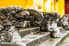 Hue Imperial City 27 (hughderr) Tags: old city travel yellow colorful flickr dragon citadel vietnam adventure imperial ornate hue royalty wanderrlust