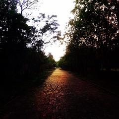 แม้ว่ามันจะเลือนลางแต่ก็...มีหนทางให้ก้าวเดินเสมอ #ชีวิตลิขิตเอง