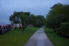 Linzfest 2014 (austrianpsycho) Tags: linz path wiese baum openair weg regnerisch 2014 donaupark verregnet schlechtwetter linzfest donaulände baumfällung gefällt 17052014 linzfest2014