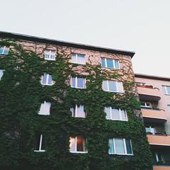 Irgendwo in Berlin-Schöneberg gestern Abend (TiloHensel) Tags: abend gestern irgendwo berlinschöneberg
