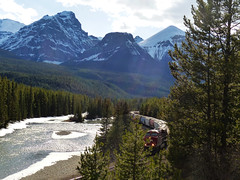 Near Morant's Curve (annkelliott) Tags: canada mountains nature forest train landscape scenery railway rockymountains peaks freight snowcovered cprail canadianpacificrailway mountainscene morantscurve nearlakelouise wofcalgary wendofbowvalleyparkway