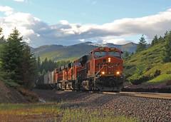 GN Colors (ahall4370) Tags: trains bn gn bnsf railroads