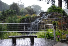 Waterfall in the rain (zawtowers) Tags: world plants house storm heritage nature weather rock kew gardens waterfall site hard bad royal conservation down historic unesco alpine fungus botanic typical raining davies hammering lashing