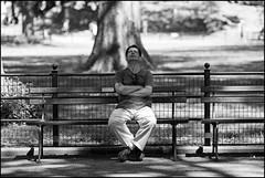 CI0A1313 B&W (Damien DEROUENE) Tags: street nyc people newyork bench centralpark damienderouene