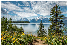 The path to Colter Bay (jeannie'spix) Tags: bay flickr wildflowers grandtetons tetons nos colterbay smugmug nct colter 2014 gt14